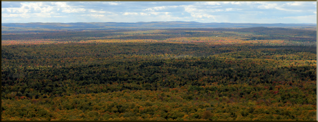 The Northwoods - Fall Color